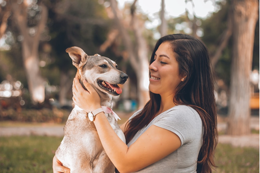 Everything You Need to Know About Animal Communication