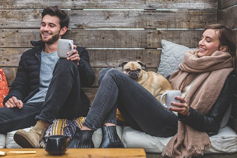 Is pet social media important for pet owners?