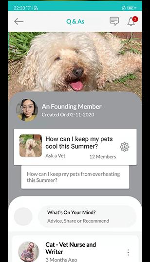 Q&A petsforever app view