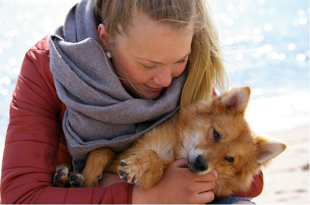 Facts about Dog Trust that you may want to Know