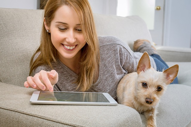 What Should I Look for When Choosing a Vet Online?