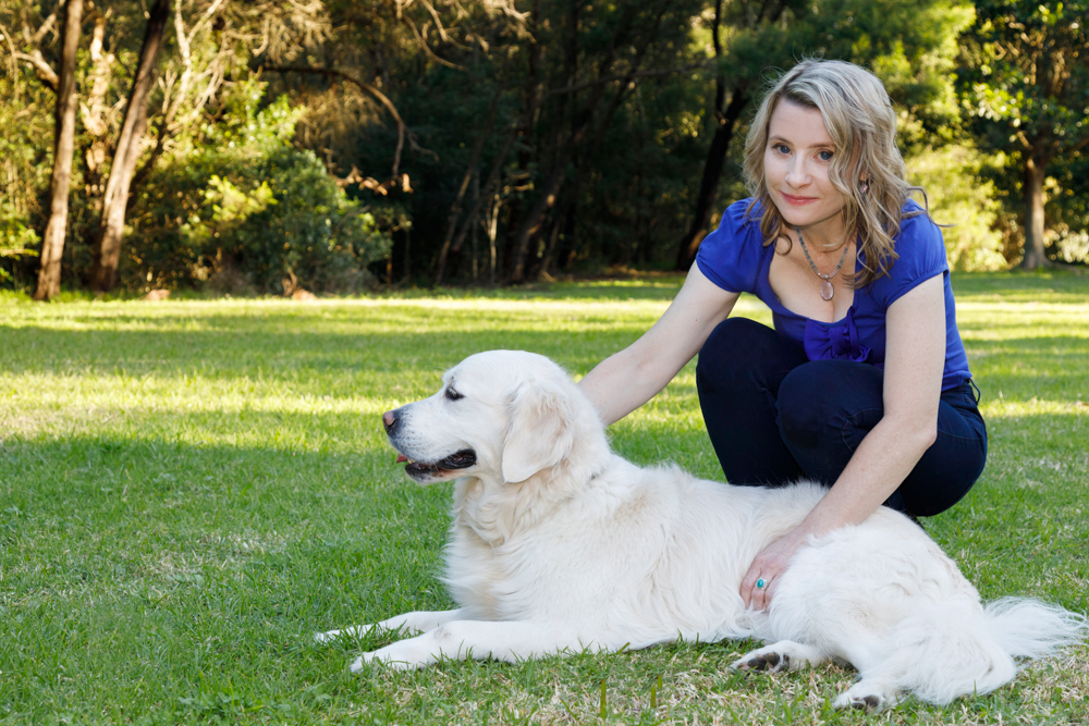 What is Reiki? Can it help any pet?