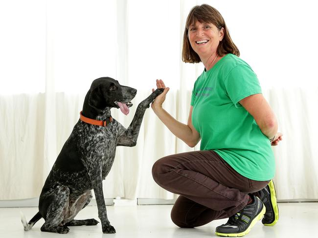 What is clicker training?